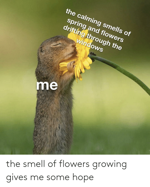 growing: the smell of flowers growing gives me some hope