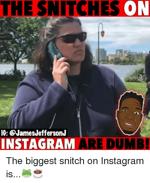 Dumb, Instagram, and Memes: THE SNITCHES ON  IG: @JamesJeffersonJ  INSTAGRAM ARE DUMB The biggest snitch on Instagram is...🐸☕️