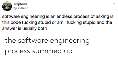 Summed Up: the software engineering process summed up