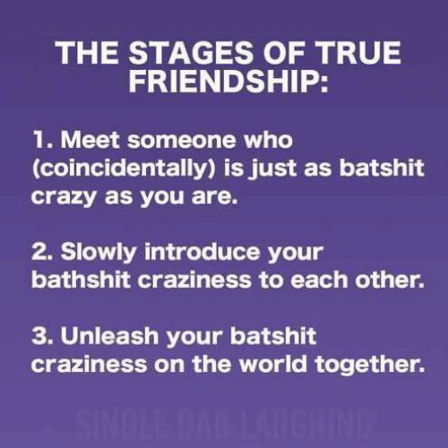 meet someone: THE STAGES OF TRUE  FRIENDSHIP:  1. Meet someone who  (coincidentally) is just as batshit  crazy as you are.  2. Slowly introduce your  bathshit craziness to each other.  3. Unleash your batshit  craziness on the world together.  SINDLE DAD LAUGHINE