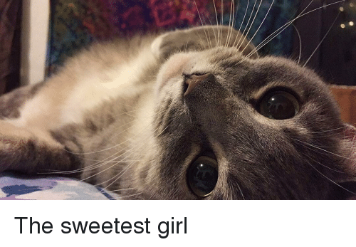 Girl, Mean, and Single: The sweetest girl
