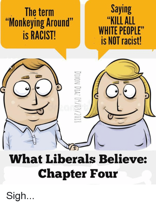 """Memes, White People, and White: The term  """"Monkeying Around""""  is RACIST!  Saying  """"KILL ALL  WHITE PEOPLE""""  is NOT racist!  What Liberals Believe:  Chapter Four Sigh..."""