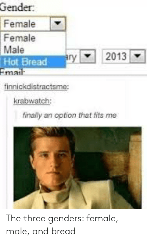 bread: The three genders: female, male, and bread