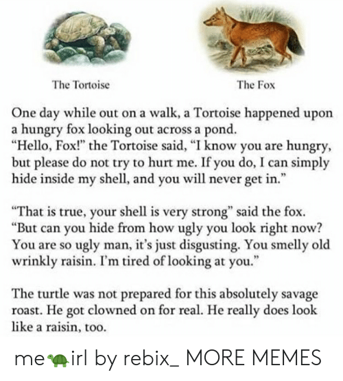 """Liked A: The Tortoise  The Fox  One day while out on a walk, a Tortoise happened upon  a hungry fox looking out across a pond.  """"Hello, Fox!"""" the Tortoise said, """"I know you are hungry  but please do not try to hurt me. If you do, I can simply  hide inside my shell, and you will never get in.""""  95  """"That is true, your shell is very strong"""" said the fox.  """"But can you hide from how ugly you look right now?  You are so ugly man, it's just disgusting. You smelly old  wrinkly raisin. I'm tired of looking at you.""""  The turtle was not prepared for this absolutely savage  roast. He got clowned on for real. He really does look  like a raisin, too. me🐢irl by rebix_ MORE MEMES"""