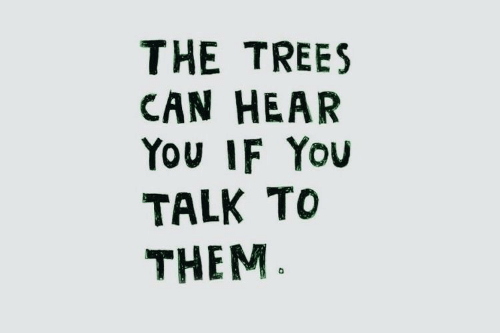 Can Hear: THE TREES  CAN HEAR  You IF You  TALK TO  THEM