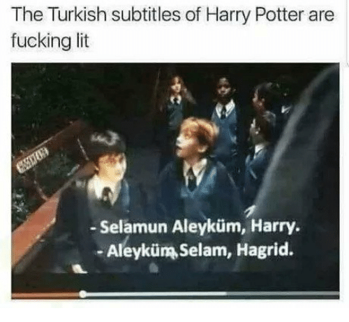 Fucking, Harry Potter, and Lit: The Turkish subtitles of Harry Potter are  fucking lit  - Selamun Aleyküm, Harry  -Aleyküm Selam, Hagrid.