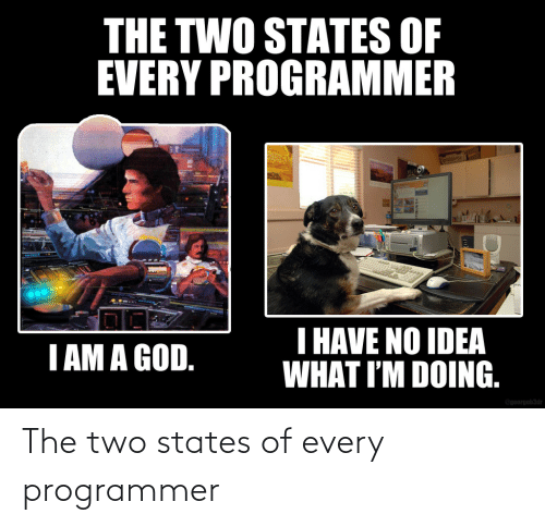 programmer: The two states of every programmer