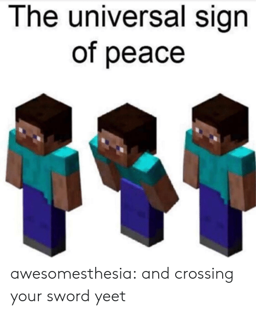 Universal: The universal sign  of peace awesomesthesia:  and crossing your sword yeet