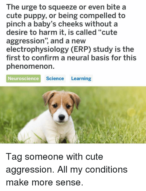 "Compelled: The urge to squeeze or even bite a  cute puppy, or being compelled to  pinch a baby's cheeks without a  desire to harm it, is called ""cute  aggression"", and a new  electrophysiology (ERP) study is the  first to confirm a neural basis for this  phenomenoh.  Neuroscience  Science Learning Tag someone with cute aggression. All my conditions make more sense."