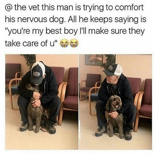 """Memes, Best, and Boy: @ the vet this man is trying to comfort  his nervous dog. All he keeps saying is  """"you're my best boy l'll make sure they  take care of u"""""""
