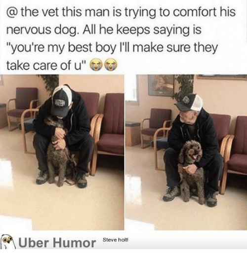 "Uber, Best, and Boy: @ the vet this man is trying to comfort his  nervous dog. All he keeps saying is  ""you're my best boy l'll make sure they  take care of u""  Uber Humor  Steve holt!"