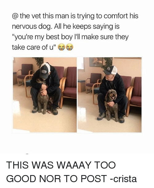 Best, Good, and Relatable: the vet this man is trying to comfort his  nervous dog. All he keeps saying is  you're my best boy l'll make sure they  take care of u THIS WAS WAAAY TOO GOOD NOR TO POST -crista