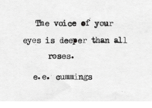 The Voice, Voice, and Roses: The voice of your  eyes is deeper than all  roses.  e.e. cuamings