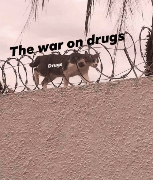The War: The war on drugs  Drugs