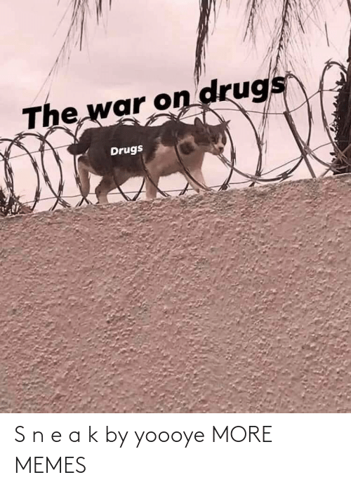 The War: The war on drugs  Drugs S n e a k by yoooye MORE MEMES