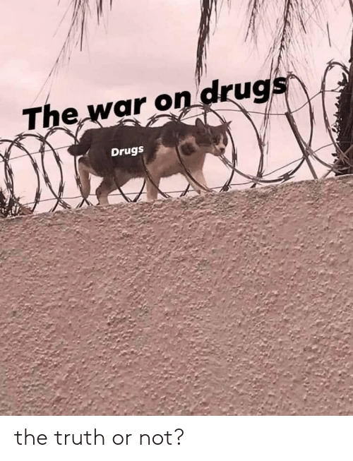 The War: The war on drugs  Drugs the truth or not?