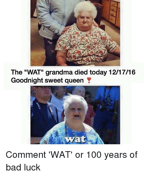 "Wat Grandma: The ""WAT"" grandma died today 12/17/16  Goodnight sweet queen Y  wyrat Comment 'WAT' or 100 years of bad luck"