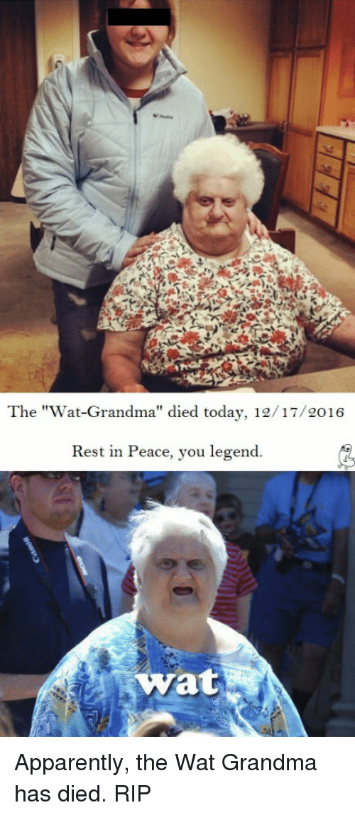 "Wat Grandma: The ""Wat-Grandma"" died today, 12/17/2016  Rest in Peace, you legend.  Wat Apparently, the Wat Grandma has died. RIP"