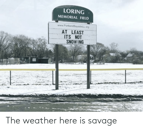 The Weather: The weather here is savage