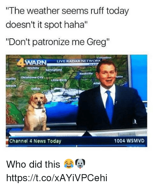 """dont patronize me: """"The weather seems ruff today  doesn't it spot haha""""  """"Don't patronize me Greg""""  LIVE RADAR NETWORK  Nashville  markuo Oklahoma City  bbock  1004 WSMVD  Channel 4 News Today Who did this 😂🐶 https://t.co/xAYiVPCehi"""