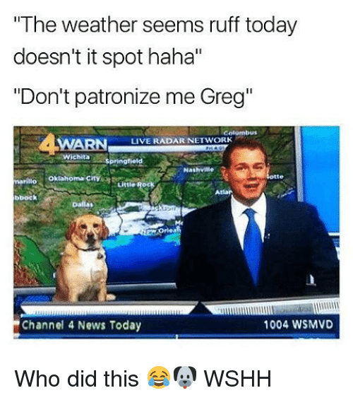 """dont patronize me: """"The weather seems ruff today  doesn't it spot haha""""  """"Don't patronize me Greg""""  LIVE RADAR NETWORK  Nashville  marillo  bbock  1004 WSMVD  Channel 4 News Today Who did this 😂🐶 WSHH"""