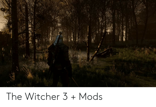 The Witcher 3 + Mods | Witcher Meme on awwmemes com