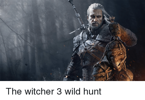 the witcher: The witcher 3 wild hunt
