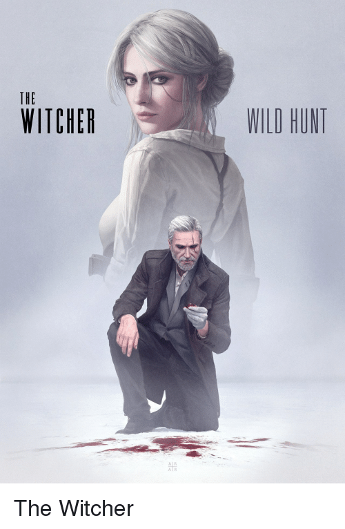 the witcher: THE  WITCHER  WILD HUNT  Al R  A R The Witcher