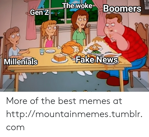 millenials: The woke Boomers  Gen Z  Fake News  Millenials More of the best memes at http://mountainmemes.tumblr.com