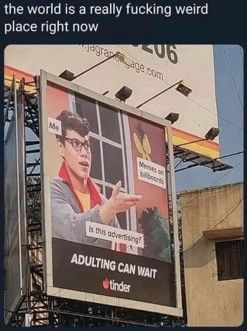 advertising: the world is a really fucking weird  place right now  agra age.com  Me  Memes on  billboards  Is this advertising?  ADULTING CAN WAIT  tinder