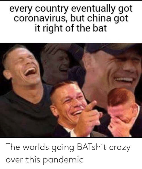 over-this: The worlds going BATshit crazy over this pandemic