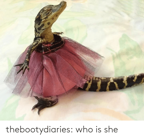 Who Is: thebootydiaries:  who is she