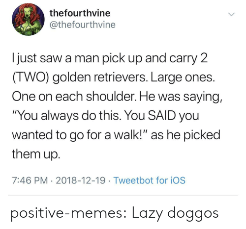 """Lazy, Memes, and Saw: thefourthvine  @thefourthvine  I just saw a man pick up and carry 2  IWO) golden retrievers. Large ones  One on each shoulder. He was saying,  """"You always do this. You SAID you  wanted to go for a walk!"""" as he picked  them up  7:46 PM 2018-12-19 Tweetbot for ioS positive-memes: Lazy doggos"""