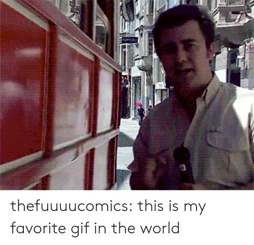 Gif, Target, and Tumblr: thefuuuucomics:  this is my favorite gif in the world