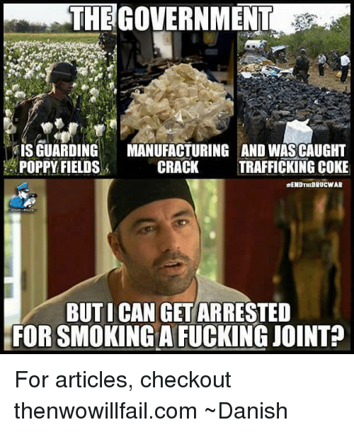 Poppies: THEGOVERNMENT  IS GUARDING  MANUFACTURING AND WASCAUGHT  POPPY FIELDS  s CRACK  TRAFFICKING COKE  RENDTHEDRUCWAR  BUT I CAN GET ARRESTED  FORSMOKING A FUCKING JOINT For articles, checkout thenwowillfail.com  ~Danish