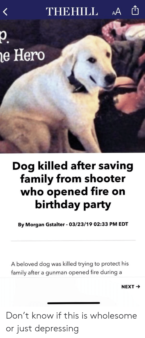 Birthday, Family, and Fire: THEHILL A  e Hero  Dog killed after saving  family from shooter  who opened fire on  birthday party  By Morgan Gstalter - 03/23/19 02:33 PM EDT  A beloved dog was killed trying to protect his  family after a gunman opened fire during a  NEXT Don't know if this is wholesome or just depressing