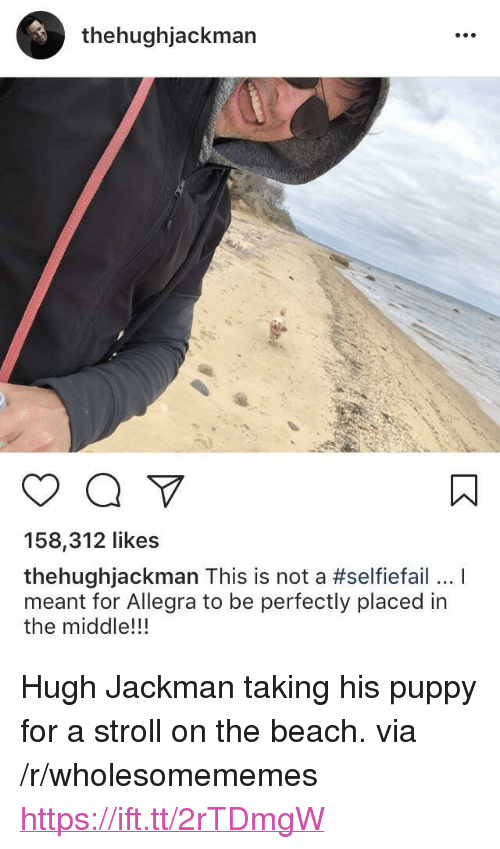 """Hugh Jackman, Beach, and Puppy: thehughjackman  158,312 likes  thehughJackman This is not a #selfiefail I  meant for Allegra to be perfectly placed in  the middle!!! <p>Hugh Jackman taking his puppy for a stroll on the beach. via /r/wholesomememes <a href=""""https://ift.tt/2rTDmgW"""">https://ift.tt/2rTDmgW</a></p>"""