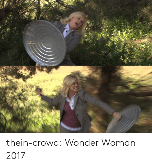 Tumblr, Blog, and Http: thein-crowd: Wonder Woman 2017