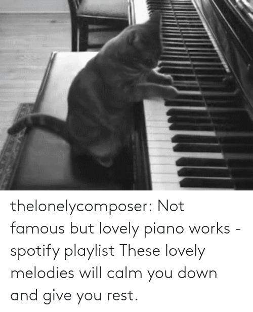 works: thelonelycomposer: Not famous but lovely piano works -spotify playlist These lovely melodies will calm you down and give you rest.