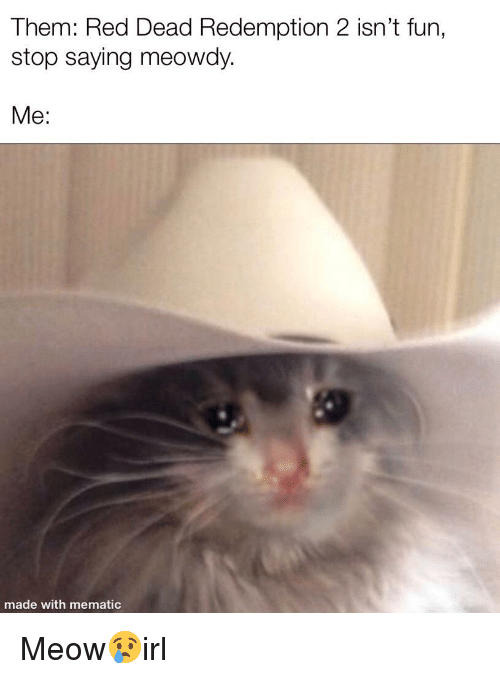 Red Dead Redemption, Cat IRL, and Red Dead: Them: Red Dead Redemption 2 isn't fun,  stop saying meowdy.  Me:  made with mematic