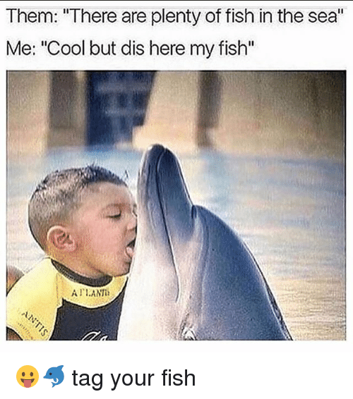 25 best memes about fishes in the sea fishes in the sea for Plenty of fish in the sea
