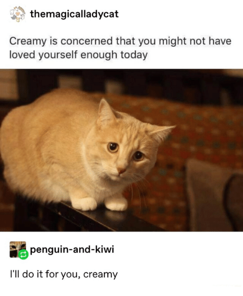 Penguin, Today, and Kiwi: themagicalladycat  Creamy is concerned that you might not have  loved yourself enough today  penguin-and-kiwi  I'll do it for you, creamy