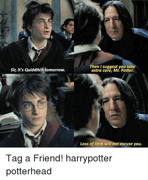 Quidditch: Then I suggest you take  extra care, Mr. Potter.  Sir, it's Quidditch tomorrow.  Loss of limb will not excuse you. Tag a Friend! harrypotter potterhead