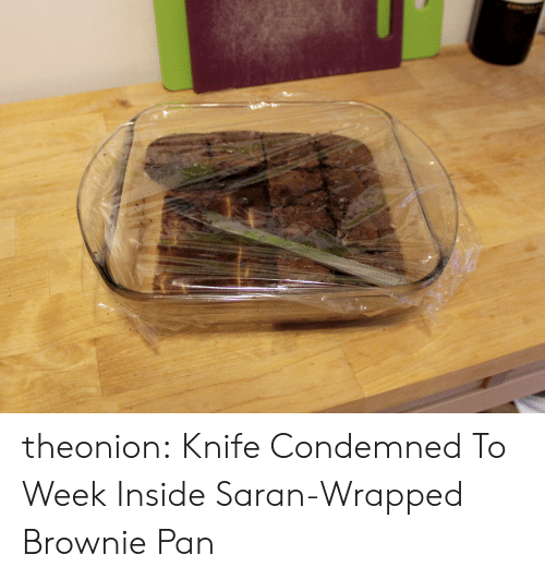 Brownie: theonion: Knife Condemned To Week Inside Saran-Wrapped Brownie Pan