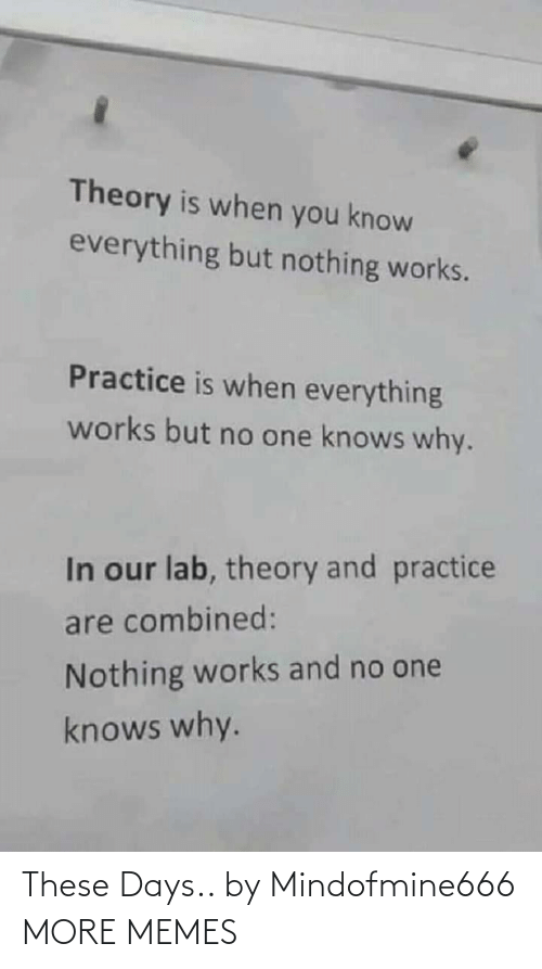 Dank, Memes, and Target: Theory is when you know  everything but nothing works.  Practice is when everything  works but no one knows why.  In our lab, theory and practice  are combined:  Nothing works and no one  knows why. These Days.. by Mindofmine666 MORE MEMES