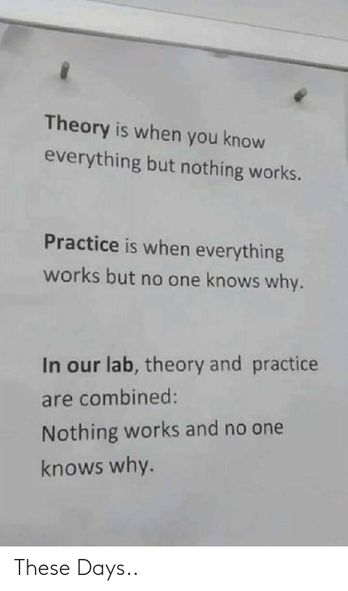 Practice: Theory is when you know  everything but nothing works.  Practice is when everything  works but no one knows why.  In our lab, theory and practice  are combined:  Nothing works and no one  knows why. These Days..