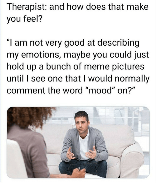 "I Am Not: Therapist: and how does that make  you feel?  ""I am not very good at describing  my emotions, maybe you could just  hold up a bunch of meme pictures  until I see one that I would normally  comment the word ""mood"" on?"""