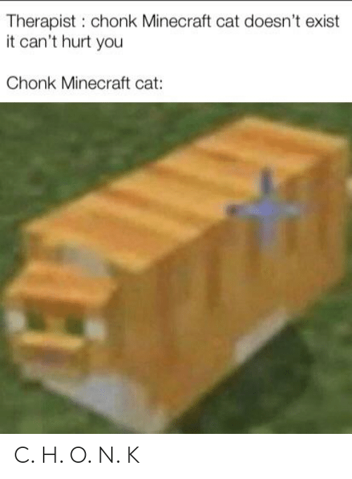 Minecraft, Dank Memes, and Cat: Therapist: chonk Minecraft cat doesn't exist  it can't hurt you  Chonk Minecraft cat: C. H. O. N. K