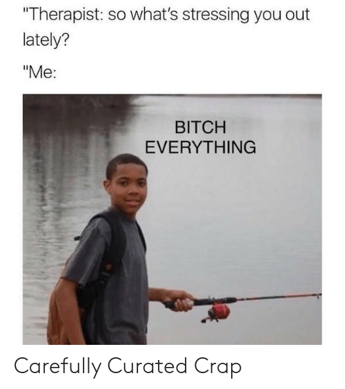 """Me Bitch: Therapist: so what's stressing you out  lately?  """"Me:  BITCH  EVERYTHING Carefully Curated Crap"""