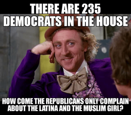 Muslim, Girl, and House: THERE ARE 235  DEMOCRATS IN THE HOUSE  HOW COME THE REPUBLICANS ONLY COMPLAIN  ABOUT THE LATINA AND THE MUSLIM GIRL?